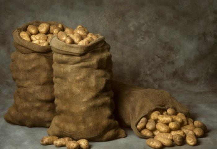 Способы хранения картофеля