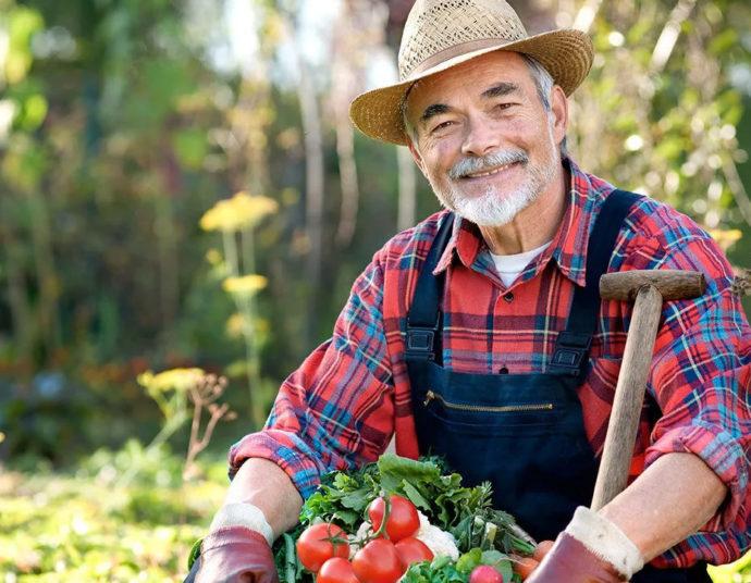 Самые благоприятные дни для садовода-огородника, цветовода в мае 2021 года
