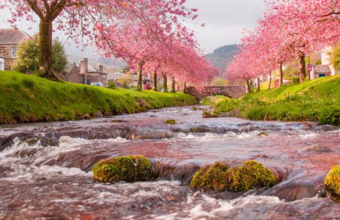 Когда начнется весна и какой она будет в 2021 году