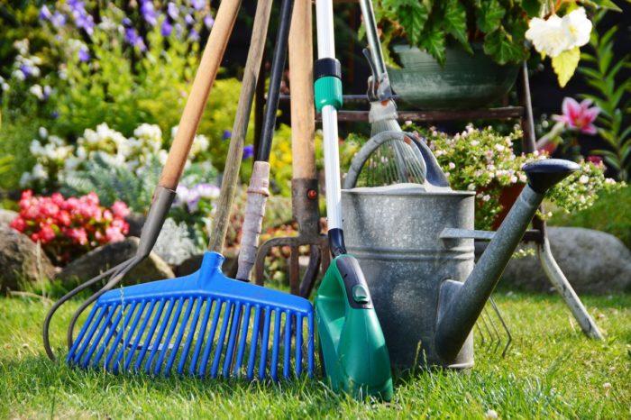Самые благоприятные дни для работ в саду и в огороде в средней полосе России на 2021 год