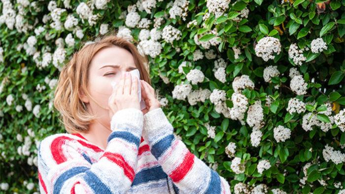 Календарь для аллергиков на 2021 год в Москве