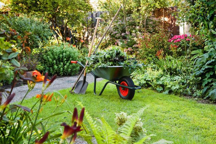 Календарь садовода-огородника на 2021 год для Урала