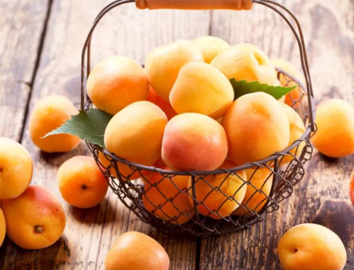 Когда собирать абрикосы