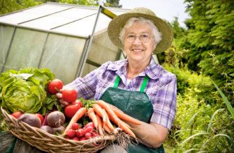 Благоприятные дни для садовода и огородника в августе 2021 года