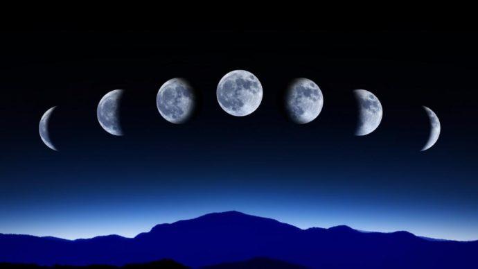 Посадка в зиму и уход за озимым чесноком по лунному календарю в 2021 году